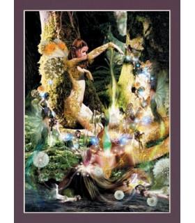 Poster La Creación (30 x 40,5 cm)