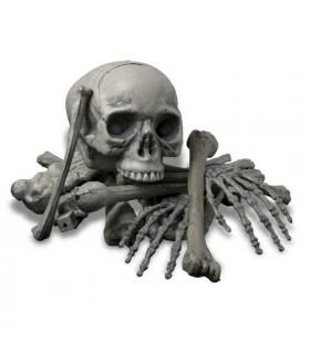 Menschliche Knochen, 18 Stück