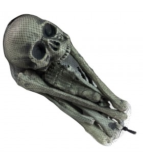 Huesos humanos, 18 piezas