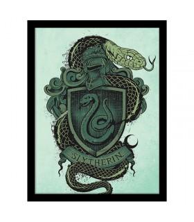 Estampado Escudo de Slytherin, Harry Potter